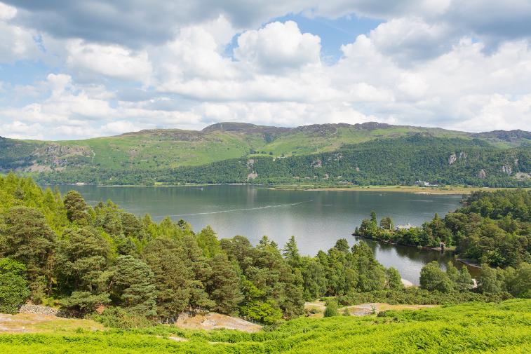 Family Friendly Walks Lake District Brandelhow Bay