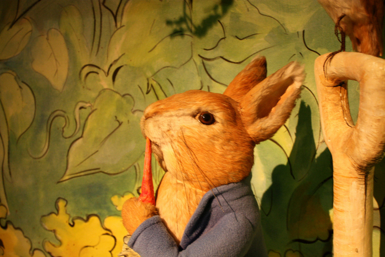 Family Days Out in the Lake District Beatrix Potter